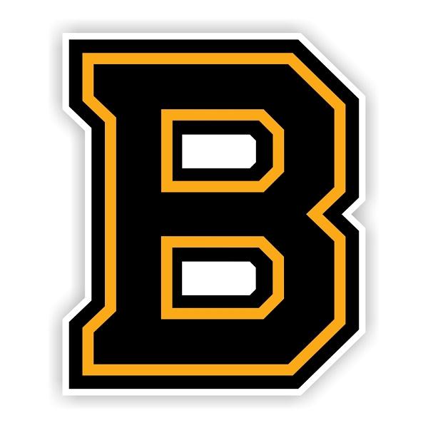 Boston Bruins B Vinyl Decal Sticker 4 Sizes