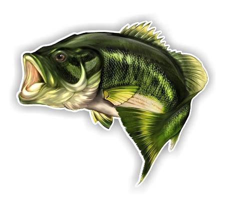Largemouth Bass Fish F Die Cut Vinyl Decal Sticker