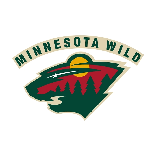 Minnesota Wild B Vinyl Decal Sticker 4 Sizes