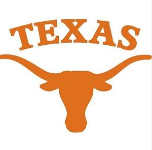 Texas Longhorns Alt B Lettering Vinyl Die Cut Decal 4
