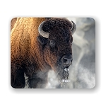 American Bison Mouse Pad 9.25