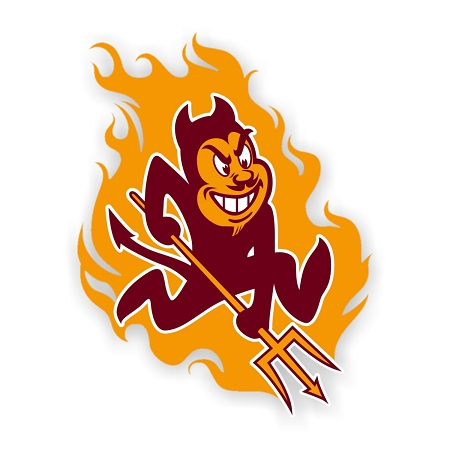 https://www.decalsextremeonline.com/assets/images/arizonasundevils(flames).jpg