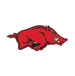 Arkansas Razorbacks Vinyl Die-Cut Decal / Sticker ** 4 Sizes **