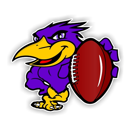 Baltimore Ravens Mascot Vinyl Die Cut Decal 4 Sizes