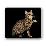 Bengal Cat Mouse Pad 9.25