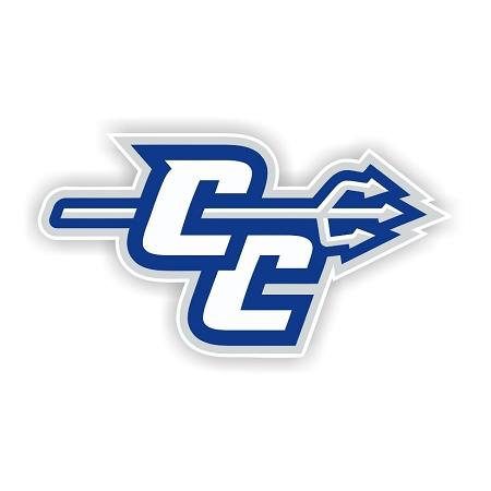 Central Connecticut State University Blue Devils A Die