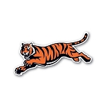 Cinncinati Bengals Whole Tiger Vinyl Die-Cut Decal ** 4 Sizes **
