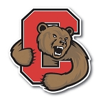 Cornell University Vinyl Decal / Sticker ** 4 Sizes **