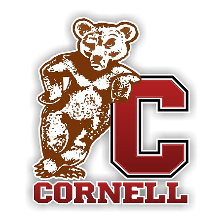 Cornell University Vinyl Decal Car Window  You Pick The Size /& Color