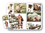 Dog Lover (B) Mouse Pad & Coaster Set