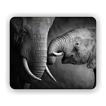 Elephant Effection Mouse Pad 9.25