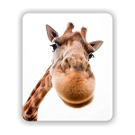 Funny Giraffe  Mouse Pad 9.25