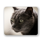 Gray Cat Mouse Pad 9.25