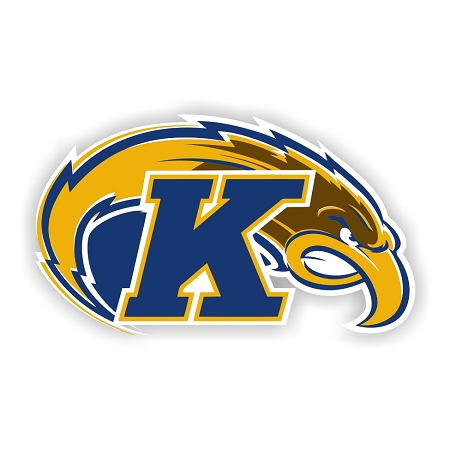 Kent State Golden Flashes A Die Cut Decal 4 Sizes