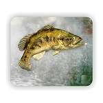 Largemouth Bass Fish (C)  Mouse Pad  9.25