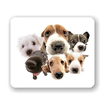 Lot of Dogs Mouse Pad 9.25