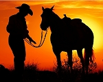 Cowboy and Horse Sunset 8x10
