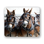 Mule Days Mouse Pad 9.25