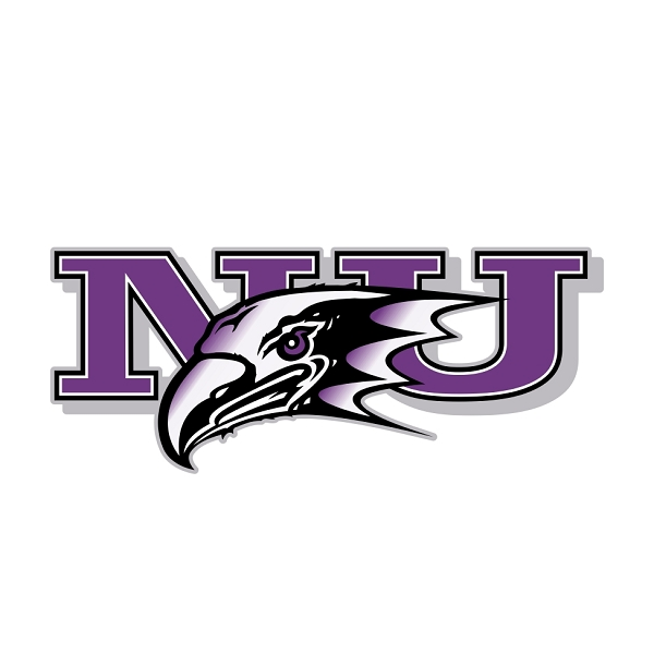 Niagara Purple Eagles A Vinyl Die Cut Decal Sticker