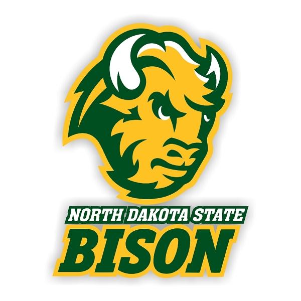 North Dakota State Bison B Vinyl Die Cut Decal Sticker