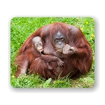 Orangutan With Baby Mouse Pad 9.25