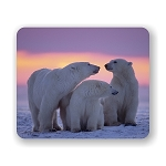 Polar Bear With Yearling Cubs Mouse Pad 9.25