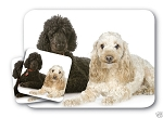 POODLE MOUSE PAD & SET OF 2 COASTERS *GREAT GIFT*