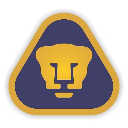 Image result for logo pumas