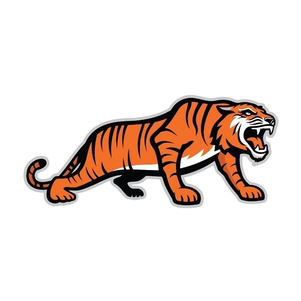 Rit Tigers Rochester Institute Of Technology H Vinyl Die