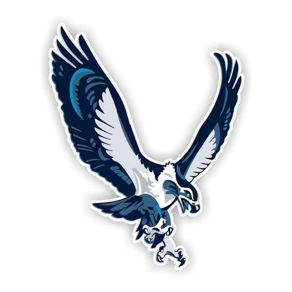 Seattle Seahawks Mascot Die Cut Decal 4 Sizes