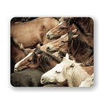 Stampeding Wild Horses Mouse Pad 9.25