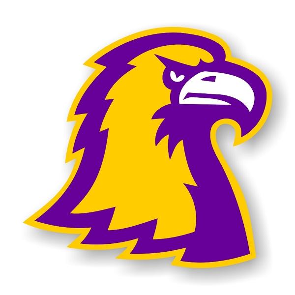 Ttu Tennessee Tech Golden Eagles H Die Cut Decal 4