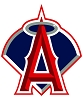 Anaheim Angels Baseball 12