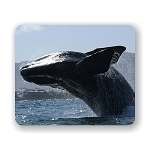 Whale Breach Mouse Pad 9.25