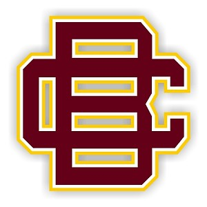 Bethune-Cookman Wildcats Letters (A) Vinyl Die-Cut Decal ** 4 Sizes **