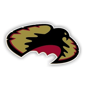 Denver Pioneers (C) Die-Cut Decal ** 4 Sizes **