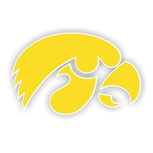 Iowa Hawkeyes Vinyl Die-Cut Decal ** 4 Sizes **